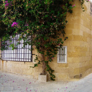 Old and Modern Buildings of Mdina (Ref: pfm110069)